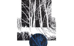 El bosque translúcido 30|Obra gráficadeJosep Pérez González| Compra arte en Flecha.es