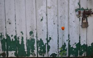 Ignorancia|FotografíadeLizmenta| Compra arte en Flecha.es
