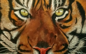 La mirada del tigre|PinturadeJorge perez| Compra arte en Flecha.es