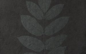 Hataku 1#|CollagedeAlicia Calbet| Compra arte en Flecha.es