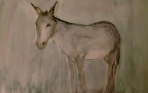 Burro 4 DibujodeOliverPlehn-Artist  Compra arte en Flecha.es