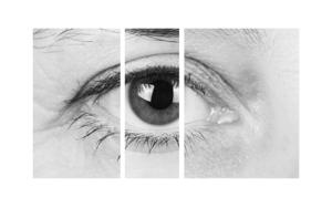 Metamorphosis|Fotografíadealbametzger| Compra arte en Flecha.es