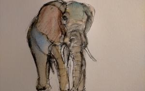 Elefante 8|DibujodeOliverPlehn-Artist| Compra arte en Flecha.es