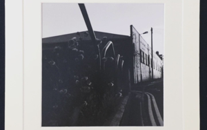 Miscanthus│autumn UK│acid-free photo paper│printed and produced in the UK│origin FotografíadeJHIH YU CHEN  Compra arte en Flecha.es