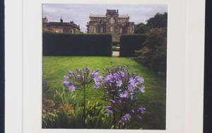 English Garden2│acid-free photo paper│printed and produced in the UK│origin FotografíadeJHIH YU CHEN  Compra arte en Flecha.es