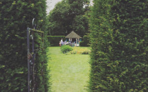English Garden│Class II Historic Site│Acid-free Photo Paper│Printed in the UK│Origin FotografíadeJHIH YU CHEN  Compra arte en Flecha.es