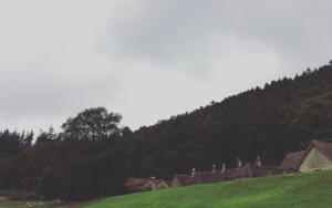 Cragside│acid-free photo paper│printed in the UK│pine thick border│Original|FotografíadeJHIH YU CHEN| Compra arte en Flecha.es