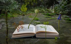 La metamorfosis de las plantas|FotografíadeLeticia Felgueroso| Compra arte en Flecha.es