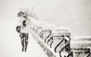 """""""Winter song"""" FotografíadeGuillermo De Angelis  Compra arte en Flecha.es"""