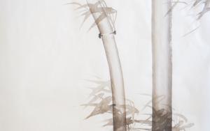 Bambú con viento Nº 4 DibujodeLuciana Rago Ferrón  Compra arte en Flecha.es