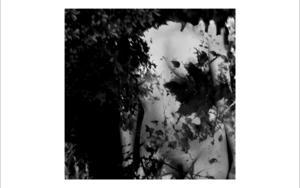 natura desnuda 2|FotografíadeRoberto Valentino| Compra arte en Flecha.es