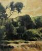 Pinos del Saler   Pintura de Jorge Pedraza   Compra arte en Flecha.es