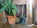Las macetas de la puerta | Pintura de Antonio Barahona | Compra arte en Flecha.es