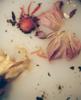MADRE | Fotografía de Ana Sting | Compra arte en Flecha.es