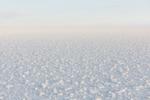 Sinfín | Digital de Cano Erhardt | Compra arte en Flecha.es