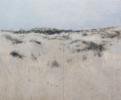Dunas de Doñana II | Pintura de José Luis Romero | Compra arte en Flecha.es