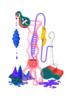 Juicy I   Dibujo de Otis   Compra arte en Flecha.es