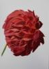 Crisantemo Rojo | Pintura de Miguel Ortega Mesa | Compra arte en Flecha.es
