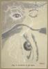 Anatomía de la vigilia | Collage de Sara Calivi | Compra arte en Flecha.es