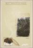Anatomía de una alucinación | Collage de Sara Calivi | Compra arte en Flecha.es
