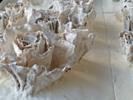 ROSAS BLANCAS | Escultura de beatriz cárcamo | Compra arte en Flecha.es