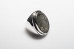Anillo de plata 950 y fósil | Joyería de Ester Ventura | Compra arte en Flecha.es