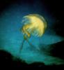 Baila Medusa | Fotografía de Beatriz García Infante | Compra arte en Flecha.es