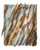 Eucalipto V | Collage de Crisdever | Compra arte en Flecha.es
