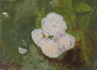 Rosas 21   Pintura de Ignacio Mateos   Compra arte en Flecha.es