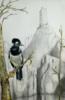 Ladrón de oro.   Dibujo de Rosario Rodriguez   Compra arte en Flecha.es