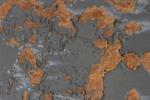 Toro de Osborne II | Digital de Cruz Mondragón | Compra arte en Flecha.es
