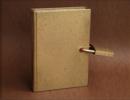 """Libro prohibido""   Escultura de alfonso aguado ortuño   Compra arte en Flecha.es"