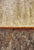 Nash equilibrium   Pintura de Ramon Vintró   Compra arte en Flecha.es
