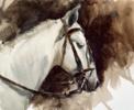 """ Horse I ""   Dibujo de Francisco Castro   Compra arte en Flecha.es"