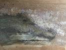 Crocodilia   Pintura de Enric Correa   Compra arte en Flecha.es