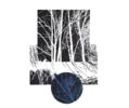 El bosque translúcido 30   Obra gráfica de Josep Pérez González   Compra arte en Flecha.es