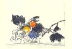 A propósito de Caravaggio. Cesta con frutas | Dibujo de Alberto Corazón | Compra arte en Flecha.es