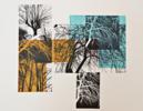 El bosque translúcido  composición 2 V/E I | Obra gráfica de Josep Pérez González | Compra arte en Flecha.es
