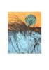 El bosque translúcido 32 V/E I   Obra gráfica de Josep Pérez González   Compra arte en Flecha.es