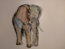 Elefante 8 | Dibujo de OliverPlehn-Artist | Compra arte en Flecha.es