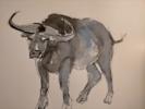 Bull 7 | Dibujo de OliverPlehn-Artist | Compra arte en Flecha.es
