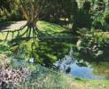 Jardines de Aiete. | Pintura de Javier Ramos Julián | Compra arte en Flecha.es